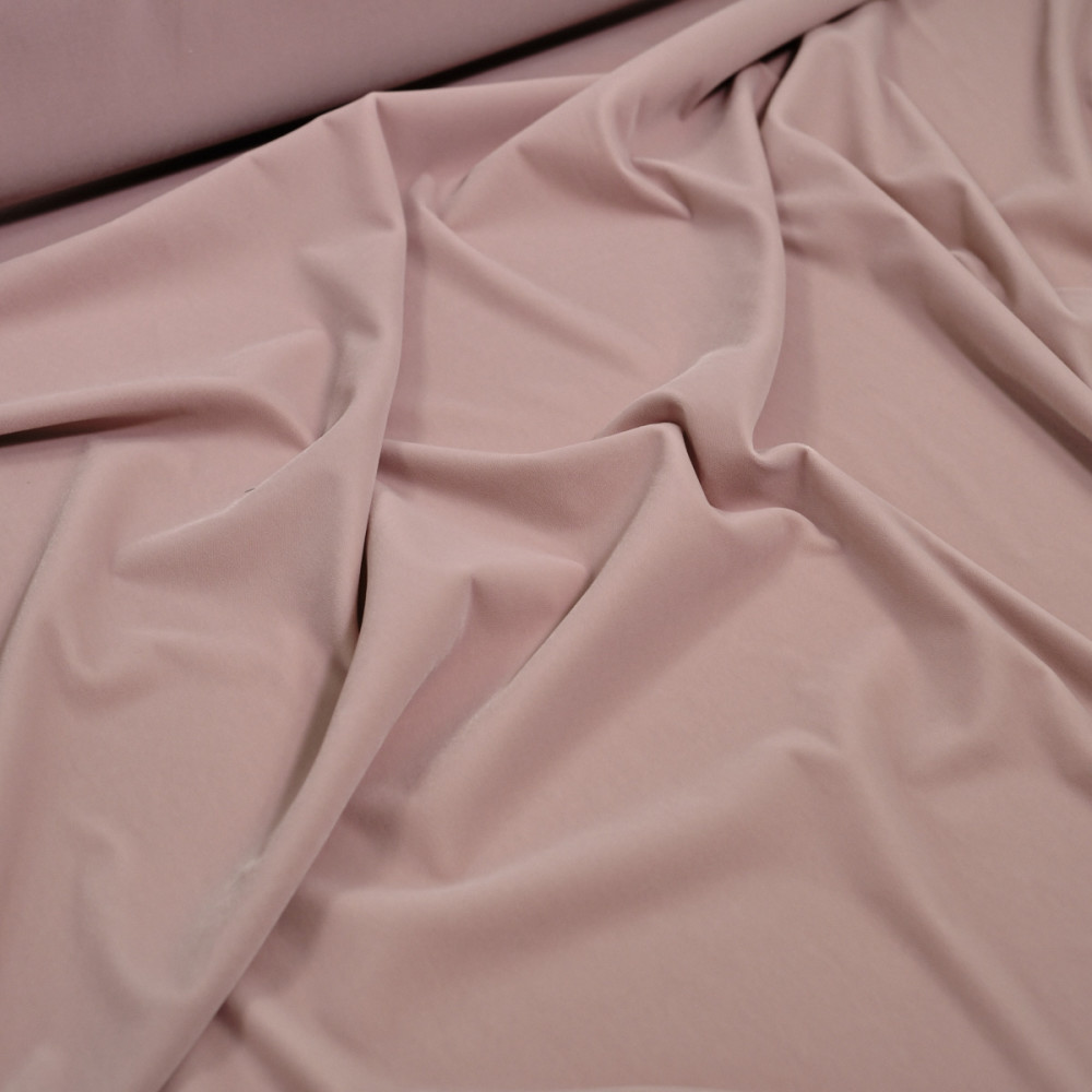 Catifea elastica Roz prafuit